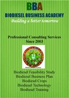 Professional Consultancy Services for Biodiesel Projects