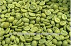 High Quality Current Flavor Arabica Washed Green Coffee Bean