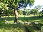 Agriculture Subdivision Project